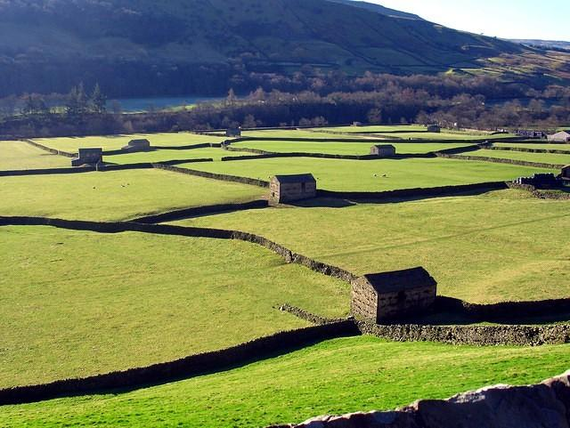 2008 02 13  Swaledale  Reeth  field barns