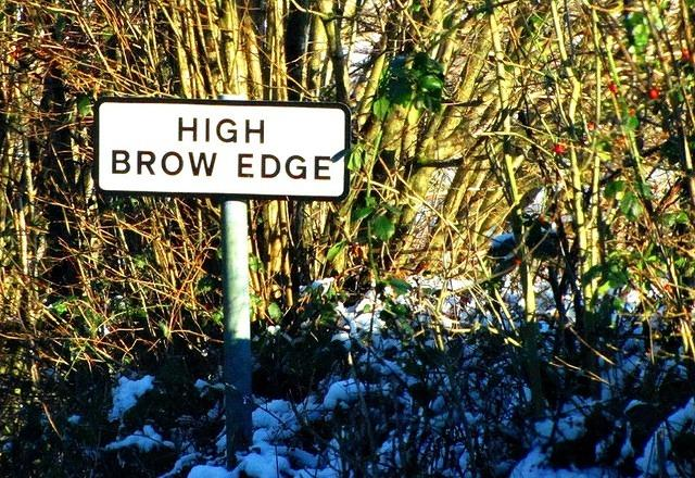 2013 01 15 High Brow Edge