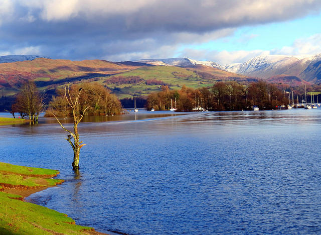 2014 01 09 South Lakeland photoshoot Windermere from Claife shore