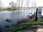 2006 03 11 Floods on the Boutonne.jpg
