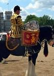 2008 06 14  Trooping the Colour  Cavalry Drum Horse