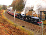 2014 01 25 Lune Gap B1 and Fusilier  For MORE see TRAINS album