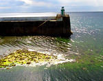 2014 07 30 Laxey Harbour with seaweed