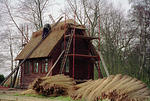 1993 Thatching at Irstead.jpg