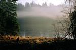 2003  12  Mist over cool waters.jpg
