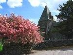 Churches Finsthwaite blossom.jpg