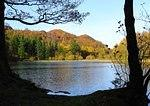 Yew Tree Tarn colours.jpg